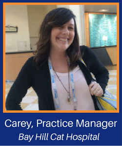 Carey, Practice Manager-3.png
