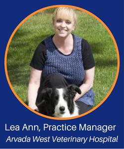 Lea Ann, Meet Series.png