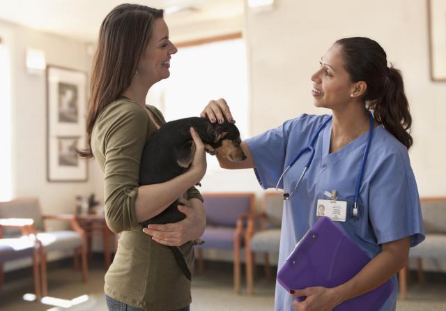 Vet_Talking_To_Patient.jpg