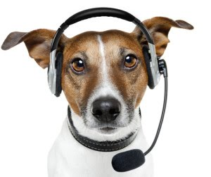dog-headset.jpg